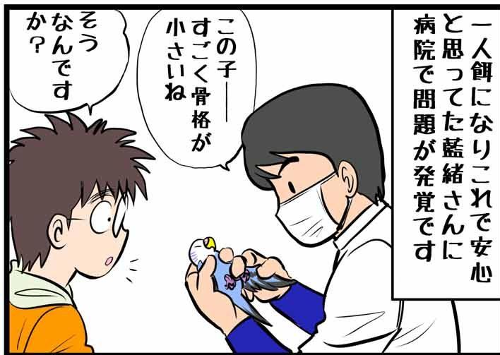 藍緒さん、ダイエット指令