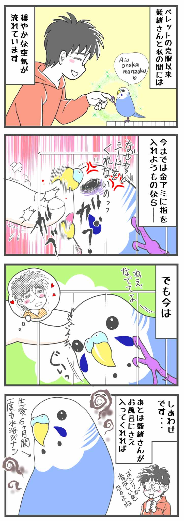 セキセイインコ セキセイ 小鳥 かわいい 鳥漫画 birb