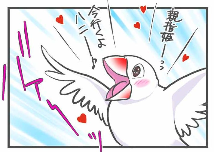 人間の足指に恋する文鳥