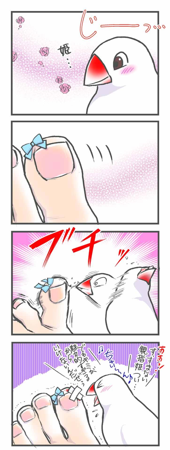 飼い主の親指に恋する文鳥