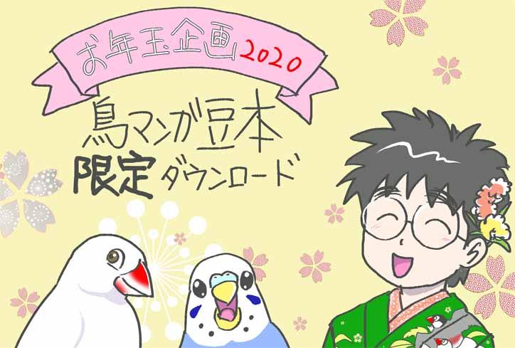 新春お年玉企画!2020