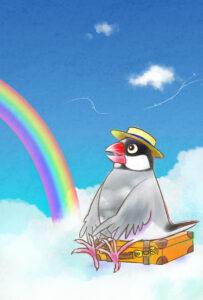 文鳥の天国へ旅立つあわたん