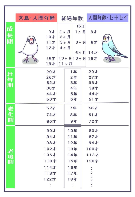 文鳥・セキセイインコ・人間年齢早見表