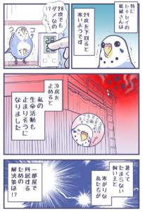 暑がりな飼い主と寒がりな鳥たちの解決策2